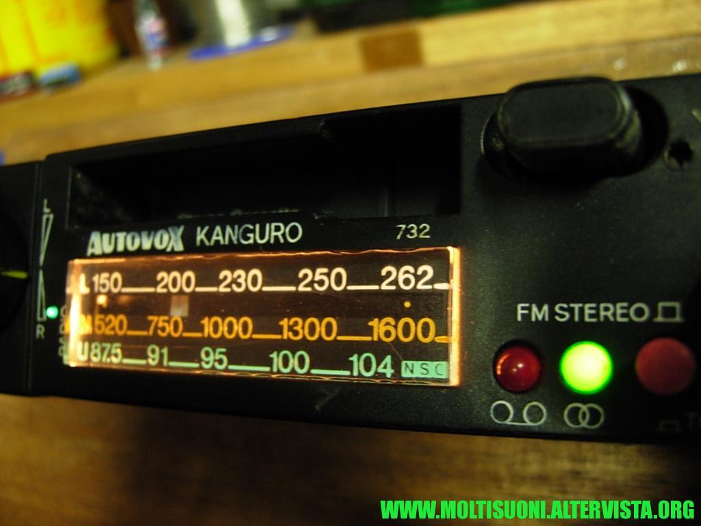 Autovox Kanguro - Moltisuoni 1