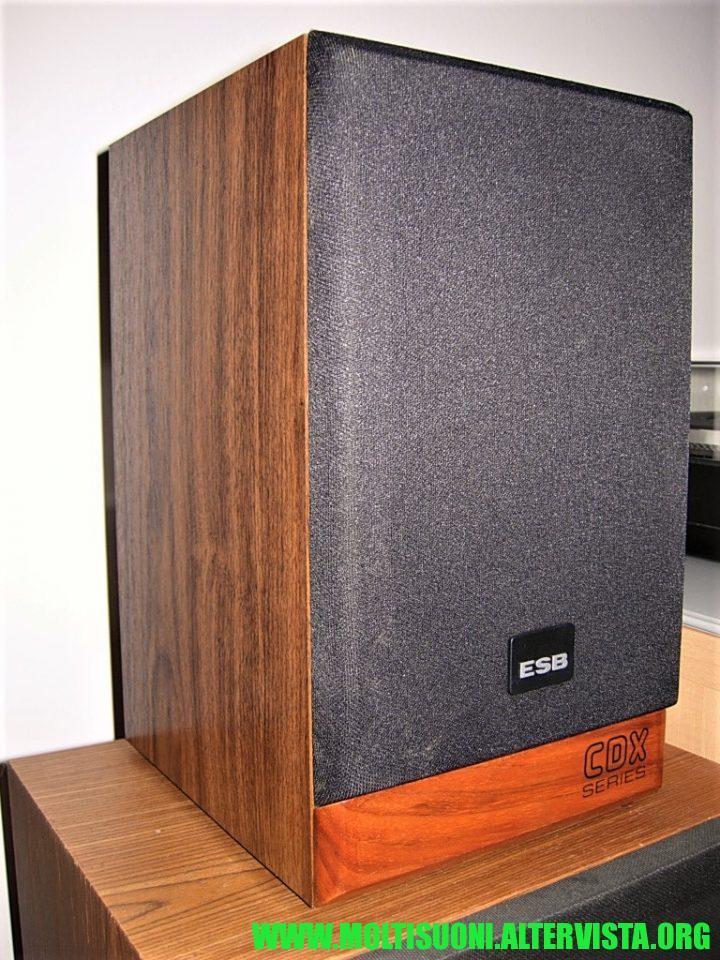 Moltisuoni - ESB CDX SB 2